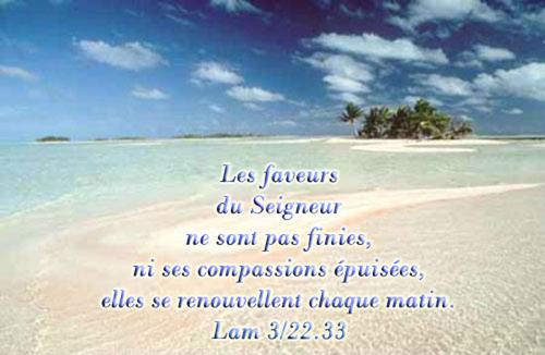 Les faveurs du Seigneur ne sont pas finies ....